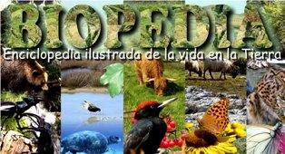 Biopedia
